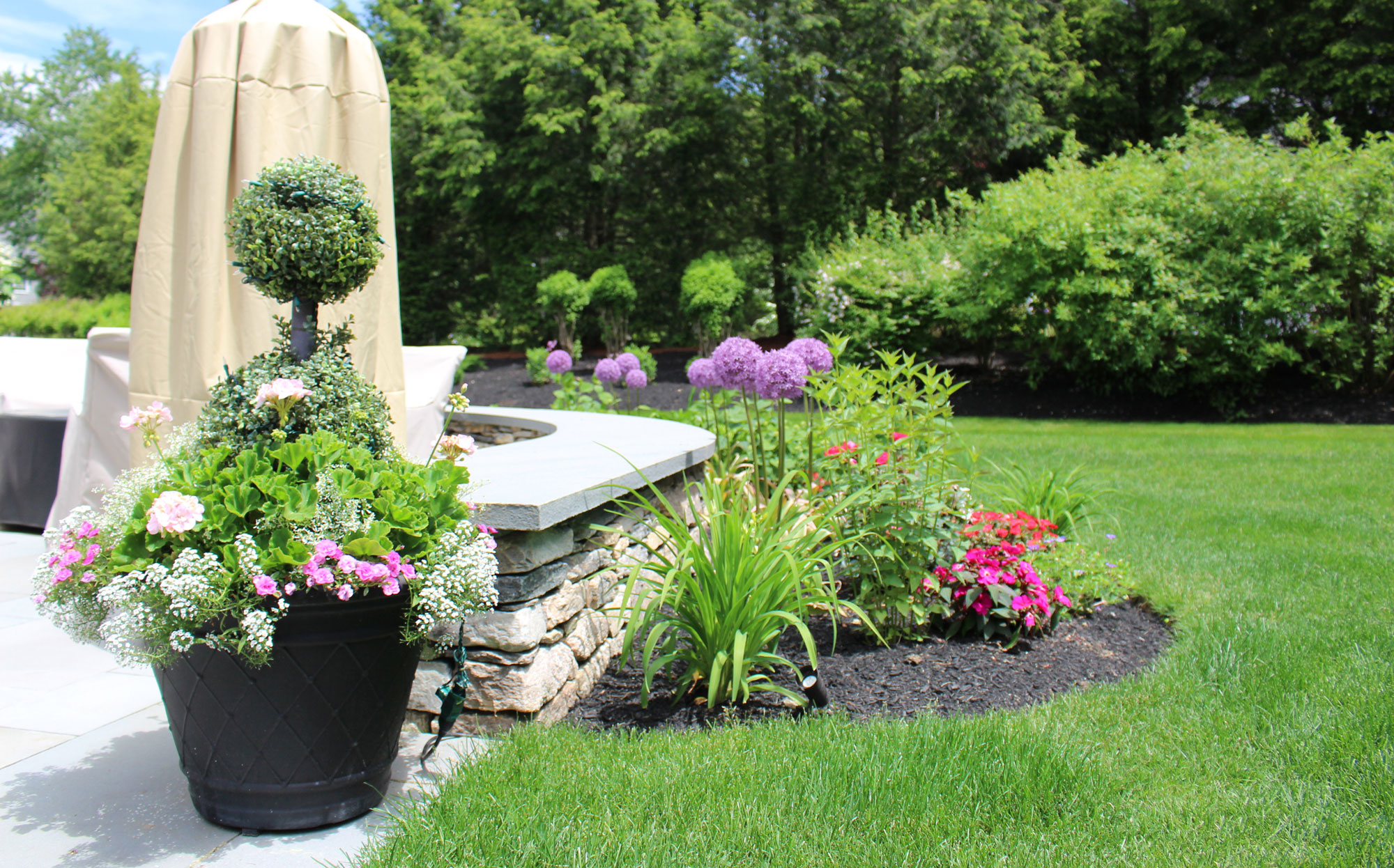 Lawn maintenance company 2 dacosta landscaping for Landscaping services